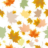 Seamless background pattern of autumn leaves. Falling , grief and sadness. Royalty Free Stock Photography