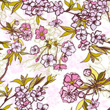 Seamless background pattern with blossoming sakura Stock Photo