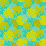 Seamless pattern with monstera leafs Stock Photo