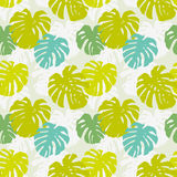 Seamless pattern with monstera leafs Royalty Free Stock Images