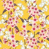 Seamless background pattern of pink Sakura blossom or Japanese f Stock Photo