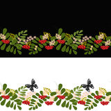 Seamless background pattern rowanberry background banner Royalty Free Stock Photography