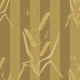 Seamless background pattern with wheat ears Royalty Free Stock Photos