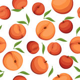 Vector Seamless background with peaches. Stock Images