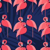 Seamless  background. Pink Flamingo on a tropical background. Royalty Free Stock Photos