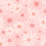 Seamless background with pink gerbera flowers. Vector illustration. Royalty Free Stock Photo