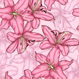 Seamless background with pink lily. Stock Photos
