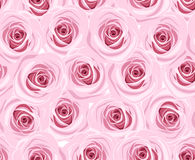 Seamless background with pink roses. Royalty Free Stock Image