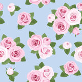 Seamless background with pink roses on blue. Royalty Free Stock Photo