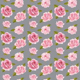 Seamless background with pink roses. Stock Images