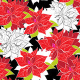 Seamless background with poinsettia Stock Photography