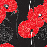 Seamless background with poppies Stock Photo