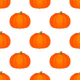 Seamless background with pumpkins. Stock Photos