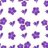 Seamless background with purple flowers. Vector illustration. Stock Photo