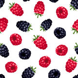 Seamless background with raspberry and blackberry. Vector illustration. Royalty Free Stock Photography
