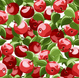Vector seamless background with red apples. Stock Image