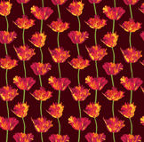 Seamless background with red flower Stock Images