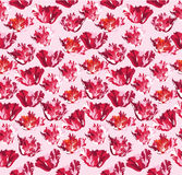 Seamless background with red flower Royalty Free Stock Photos