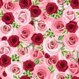 Seamless background with red and pink roses. Stock Photo
