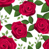 Seamless background with red roses. Stock Images
