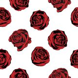 Seamless background with red roses. Vector Royalty Free Stock Image