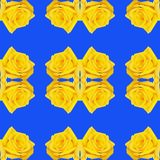 Seamless background with repeating buds of roses yellow and blue color stock photography