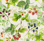 Seamless background - repeating pattern with wild herbs and berries Royalty Free Stock Images