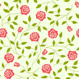 Seamless  background  with roses. Seamless abstract  background  with roses Stock Photography