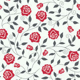 Seamless   background  with roses. Seamless abstract  background  with roses Royalty Free Stock Photography