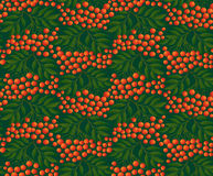Seamless background with rowan. Decorative Rowan berries seamless background Royalty Free Stock Photography