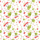 Seamless background with rowanberry and leafs Stock Images