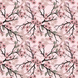 Seamless background with sakura blossoms and folliage. Black white eps outlined illustration. Stock Photography
