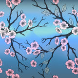 Seamless background with sakura brunch and blossoms on blue sky. Stock Photo