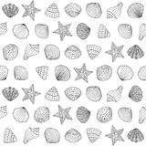 Seamless background with sea shells Stock Photography