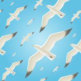 Seamless background with seagulls Stock Images