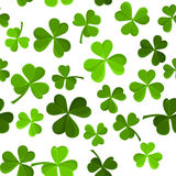 seamless background with shamrock. Stock Photography