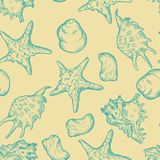Seamless background with shells. Hand drawn. Illustration stock image