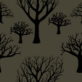 Seamless background of silhouettes of trees. Stock Images