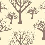 Seamless background of silhouettes of trees. Stock Photos