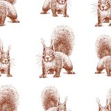 Seamless background of sketches of forest squirrel stock illustration