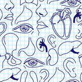 Seamless background with sketches of human organs. Royalty Free Stock Photo