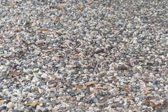 Seamless background from small stones Stock Image