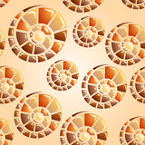 seamless background with snail shells Royalty Free Stock Photography