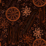Seamless background with spices and citrus fruit. Hand-drawn vec Royalty Free Stock Photo