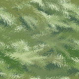 Seamless background of spruce branch. Stock Photos