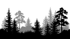 Seamless Background, Summer Forest Silhouettes Royalty Free Stock Photo