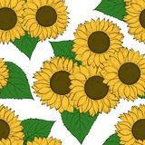 Seamless background with sunflowers. Hand-drawn contour lines and strokes Royalty Free Stock Photo