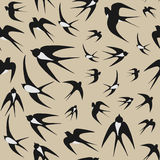 Seamless background with swallows Stock Photography
