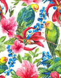 Seamless Background with Tropical Flowers, Parrots Stock Photography