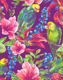 Seamless Background with Tropical Flowers, Parrots Royalty Free Stock Images